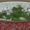 Pelin Karahan'la Nefis Tarifler Yoğurtlu Barbunya Salatası  Tarifi 26.10.2018
